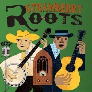 strawberry roots 1